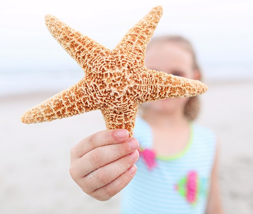 Girl holding starfish